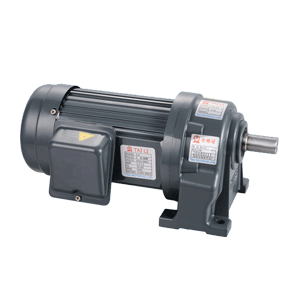 Small Gear Reduction Motor